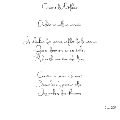 Citerne du Néflier, Nizar M. Halloun