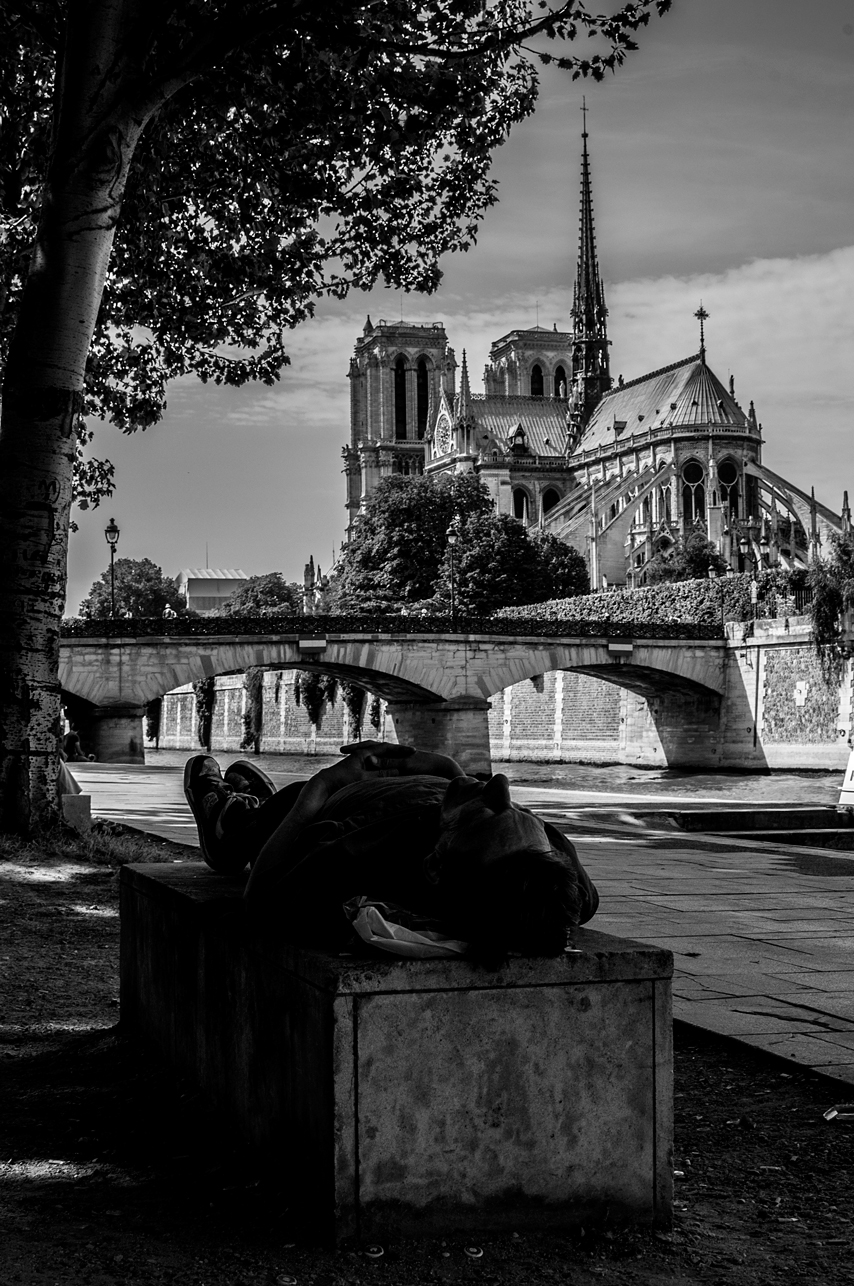 'The-Laidback of Notre Dame' Nizar M. Halloun © Attribution Non-commercial Share Alike