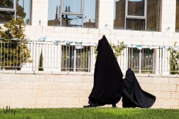 The Haredi Sect © 2015 Nizar M. Halloun