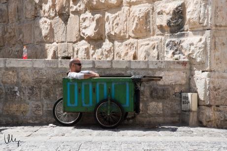 Cart Hangout © 2015 Nizar M. Halloun